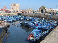 Verdes Contestam Acordo de Pescas entre a União Europeia e Marrocos nos Territórios Ocupados do Sahara Ocidental. 29010.jpeg