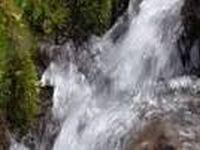 Dia mundial da água comemorado pelos Verdes. 24020.jpeg