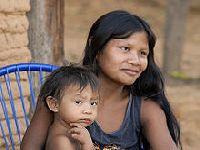 Organizações indígenas e coalizão de ONGs notificam para parar de vender carne originada de desmatamento. 34020.jpeg