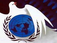Comemorar a força dos direitos humanos