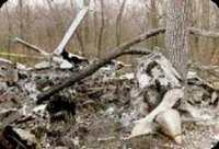Mulher e  filho sobreviveram a um acidente de aviação na Amazônia