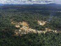 Mapa inédito indica epidemia de garimpo ilegal na Panamazônia. 30041.jpeg