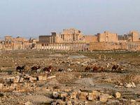 Síria - A vitória em Palmyra muda a narrativa. 24063.jpeg