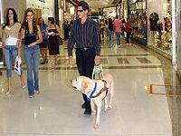 Risco de cegueira cresce no Brasil. 29063.jpeg