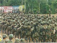 Missão de Verificação da ONU condena assassinato de dois integrantes de Farc em Antioquia. 28070.jpeg
