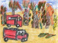 Proteção civil inspira exposição no Dolce Vita Tejo. 26075.jpeg