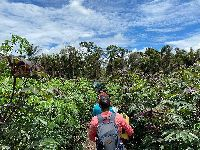 Xingu: Enquanto 320 doses vão para o lixo, governo negou vacina a indígenas na cidade. 35083.jpeg