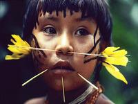 Suspeita de surto de gripe suína atemoriza Yanomami da Venezuela
