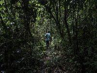 Amazônia centro do mundo. 32084.jpeg