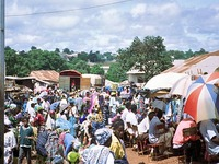 Guiné: ONU investiga eventos sangrentos
