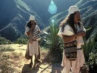 Abril Indígena 2008