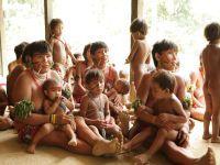 O povo Yanomami está contaminado por mercúrio do garimpo. 24095.jpeg
