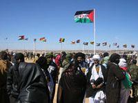 Os Verdes querem saber se o governo português vai tomar posição sobre o conflito no Sahara Ocidental. 25095.jpeg