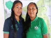 Em quarentena, comunidades do Xingu, Rio Negro e Ribeira temem invasões.... 33095.jpeg