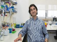 Nanopartícula para combate ao cancro desenvolvida na UC obtém designação de
