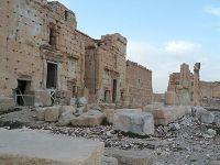 Exército descobre vala comum com vítimas do Estado Islâmico em Palmira. 24109.jpeg