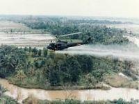 Agente Laranja: o legado fatídico dos EUA no Vietnã. 22111.jpeg