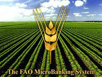 Relatório da FAO destaca experiência brasileira no combate à
