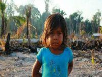 As lutas das mulheres rurais pelo acesso à terra. 26119.jpeg
