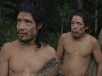 Dois últimos indígenas Piripkura estão ameaçados por grilagem. 34121.jpeg
