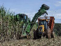 O que está em jogo com a liberação de Bolsonaro para expansão da cana na Amazônia e Pantanal?. 32122.jpeg