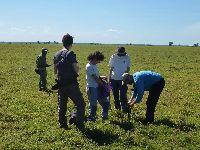 UC contribui para o processo de conservação e restauração do Parque Nacional da Gorongosa. 25128.jpeg