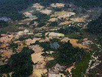 Cicatrizes na floresta: garimpo avançou 30% na Terra Indígena Yanomami em 2020. 35135.jpeg