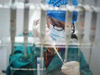 China reforça regras sobre experimentos genéticos em humanos. 31152.jpeg