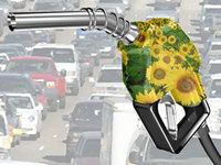 Nova usina de biodiesel da Petrobras vai aumentar a produção do combustível no país