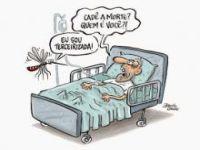 Dengue: O mosquito é democrático. 22163.jpeg