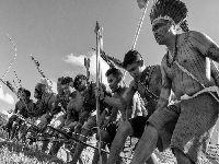 Povo Munduruku denuncia invasões de madeireiros e garimpeiros em carta aberta. 34165.jpeg