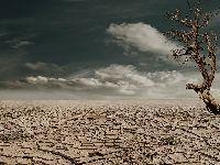 Calor: culpa do clima ou do agronegócio?. 34169.jpeg