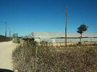 Os Verdes visitaram o Sudoeste Alentejano com as estufas na mira. 25176.jpeg