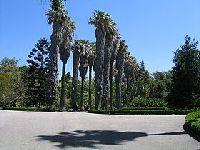 Encerramento do Jardim Botânico Tropical, em Belém, Lx. 30197.jpeg