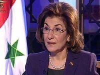 Regimes do Golfo continuam apoio a terroristas, denuncia Síria. 25203.jpeg