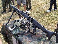 O Estatuto do Desarmamento e o excesso de criminalização. 29206.jpeg