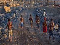 Brasil concentra metade dos assassinatos de ecologistas em todo o mundo. 20210.jpeg