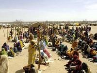 Darfur: Mais um motorista da ONU assassinado