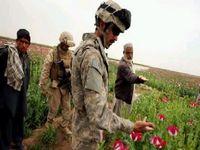 Afeganistão: A tempestade perfeita de drogas e terrorismo