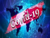 A Covid-19 e a desinformação que mata. 33218.jpeg