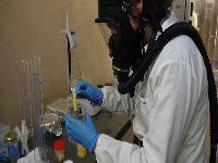 Investigadores de Coimbra desenvolvem aerogéis