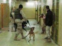 Torturas e abusos nos Estados Unidos, ONU pede respostas. 21224.jpeg