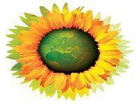 Juventude Ecologista exige mais residências universitárias. 30232.jpeg