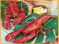 SEAP e BNB lançam crédito para pesca sustentável da lagosta