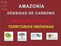 55% do carbono em terras indígenas estão em risco. 21249.jpeg