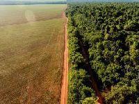 Brasil: Caravana internacional investigará impactos de grilagem de terras. 27253.jpeg