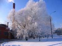 Sibéria em estado de emergência devido às temperaturas negativas abaixo de 50 graus