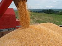 Brasil: Produção agrícola