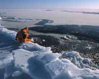 Canadá ironiza a expedição realizada pela Rússia ao Pólo Norte