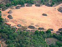 REDD, Pagamentos por Serviços Ambientais  e Espiritualidade Amazônica. 25276.jpeg